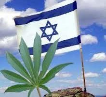IsraelCannabis