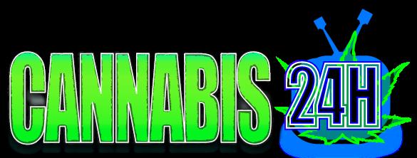 Cannabis 24h