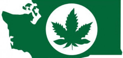 washington marihuana
