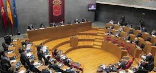navarrraparlamentoforal
