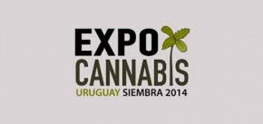 expocannabisuruguay2014