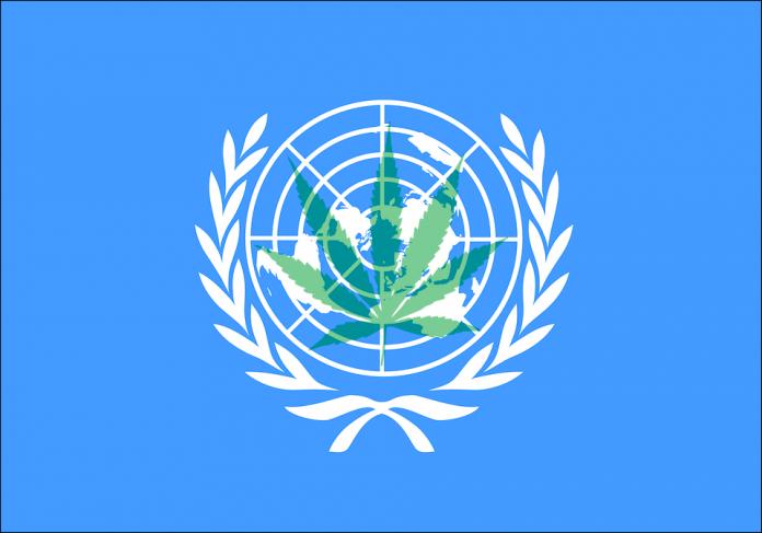 Última votación de la ONU sobre cannabis medicinal