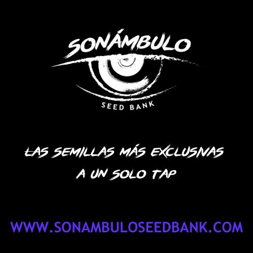 Sonámbulo Seed Bank